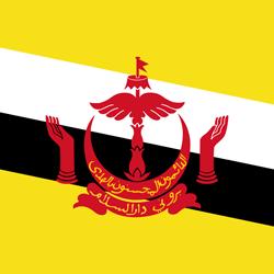 export to Brunei Darussalam